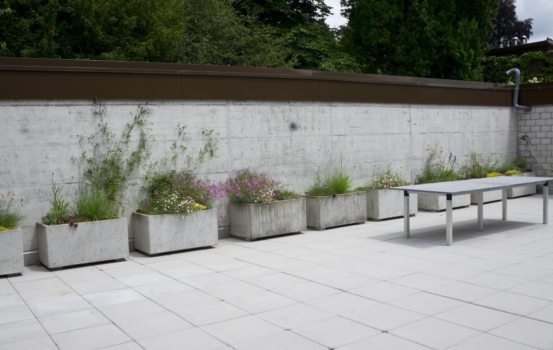 Lofthof – Eine sonnige Terrasse