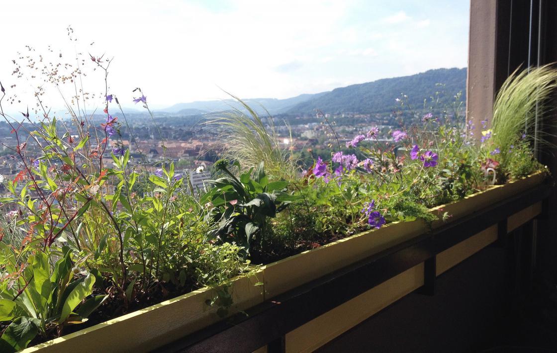 Paradies 28 – Ein Hochhausbalkon